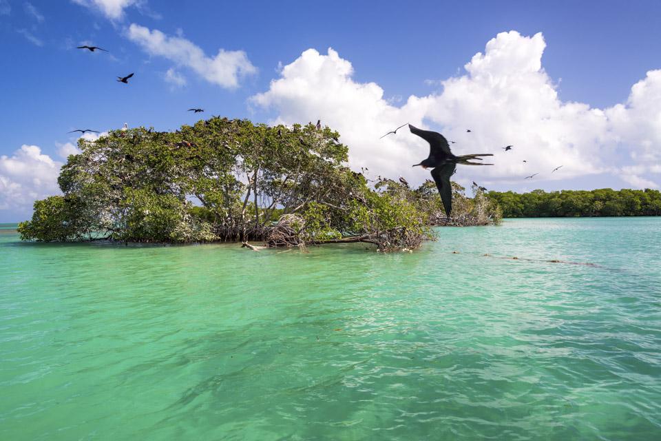 Caribbean Destinations, Best Caribbean Destinations 19